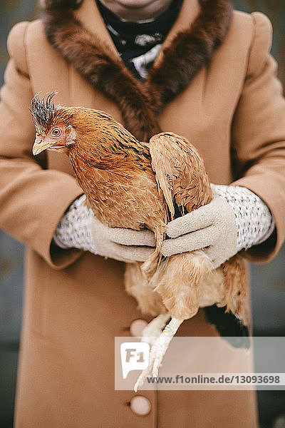 Midsection of woman holding chicken while standing outdoors