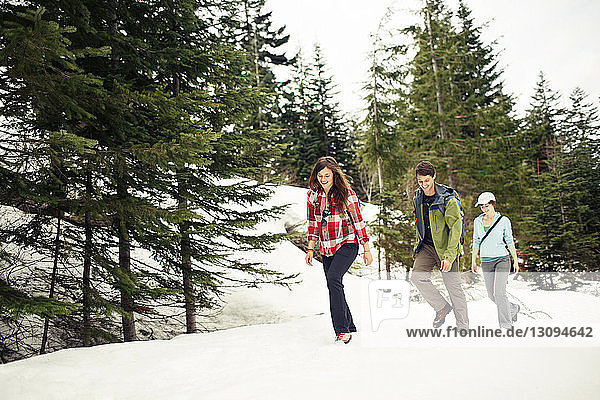 Glückliche Freunde gehen auf schneebedecktem Feld im Wald
