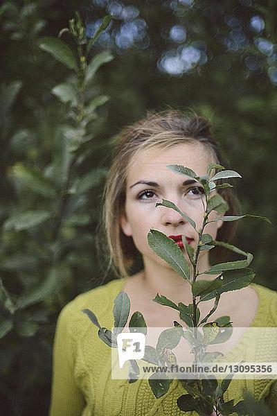 Frau hält Pflanze und schaut weg  während sie im Wald steht