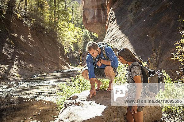 Freunde untersuchen Felsen im Wald