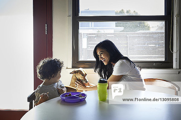 Cheerful mother playing with dog while looking at son