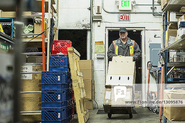 Man carrying box in luggage cart while working at warehouse
