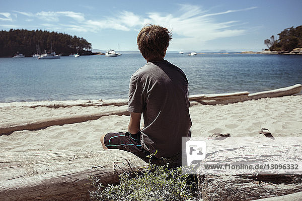 Rear view of man sitting on wood at beach against Strait of Georgia