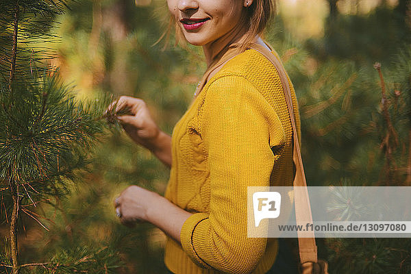 Midsection of smiling woman standing amidst pine trees at forest