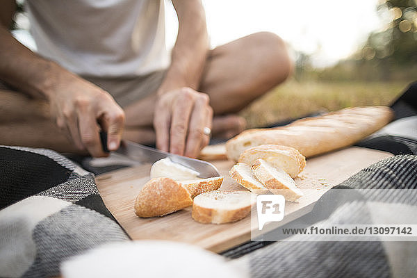Niedriger Teil eines Mannes schneidet Brot  während er auf einer Picknickdecke sitzt Niedriger Teil eines Mannes schneidet Brot, während er auf einer Picknickdecke sitzt