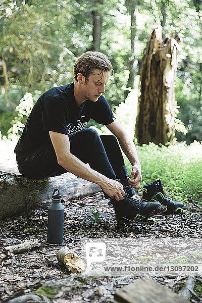 Hiker tying shoelace while sitting on wood in forest