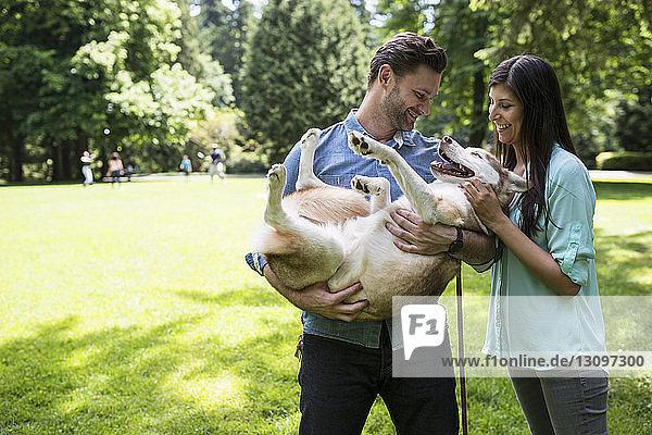 Glückliches Paar spielt mit Hund im Park