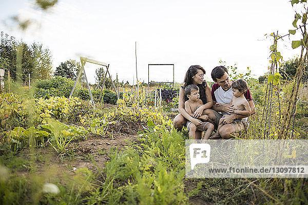 Familie auf dem Feld gegen den klaren Himmel im Gemeinschaftsgarten Familie auf dem Feld gegen den klaren Himmel im Gemeinschaftsgarten