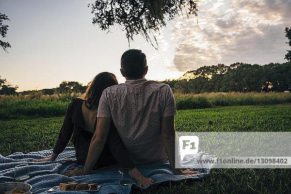 Rückansicht eines Paares  das sich bei Sonnenuntergang im Park auf einer Decke gegen den Himmel ausruht