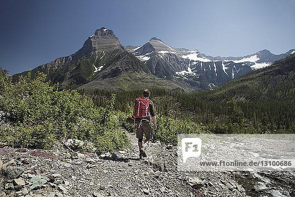 Rückansicht eines Rucksackträgers beim Wandern im Glacier National Park