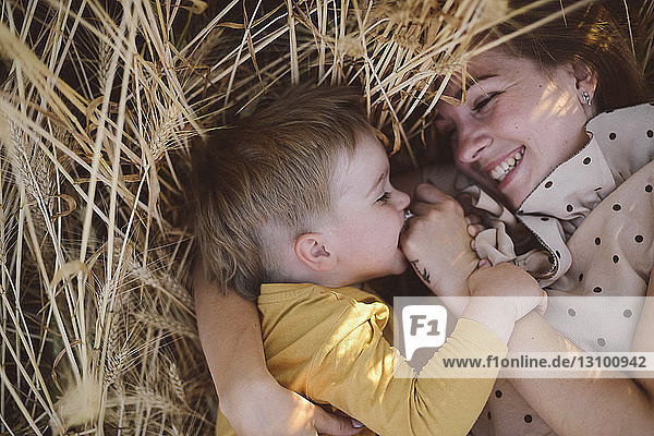 High angle view of playful son biting mother's fingers while lying on wheat field