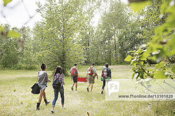 Full length of friends with backpack walking on field in forest
