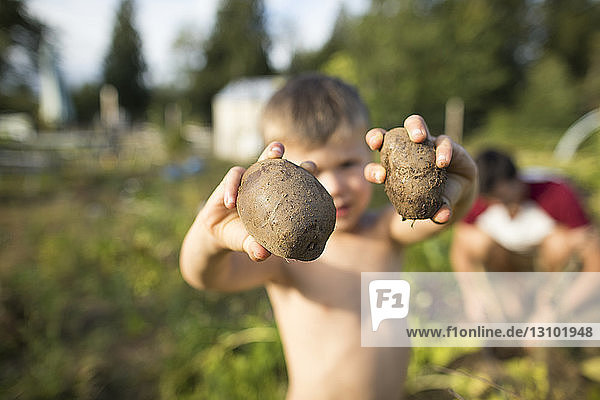 Sohn ohne Hemd hält Gemüse  während der Vater im Hintergrund im Gemeinschaftsgarten arbeitet Sohn ohne Hemd hält Gemüse, während der Vater im Hintergrund im Gemeinschaftsgarten arbeitet
