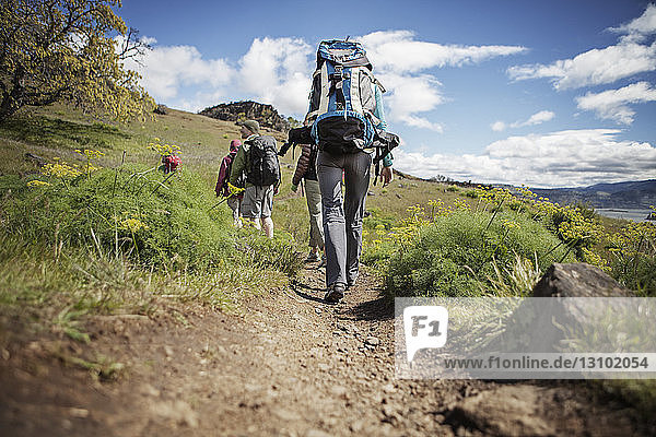 Rear view of hikers carrying backpack while walking on hill