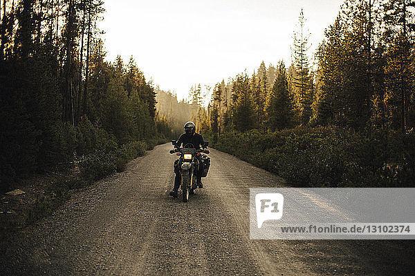 Motorradfahrer mit Motorrad auf Feldweg inmitten von Wald