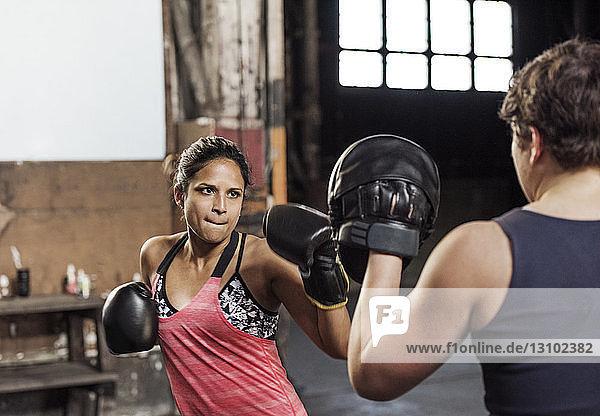 Entschlossene Boxerinnen  die im Fitnessclub trainieren
