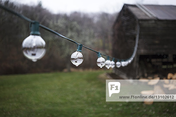 Wet decorations hanging over grassy field