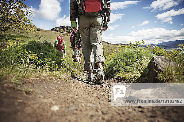Rear view of hikers walking on hill