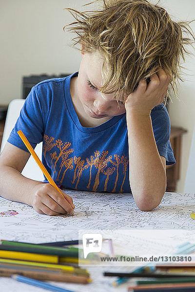 Focused boy coloring