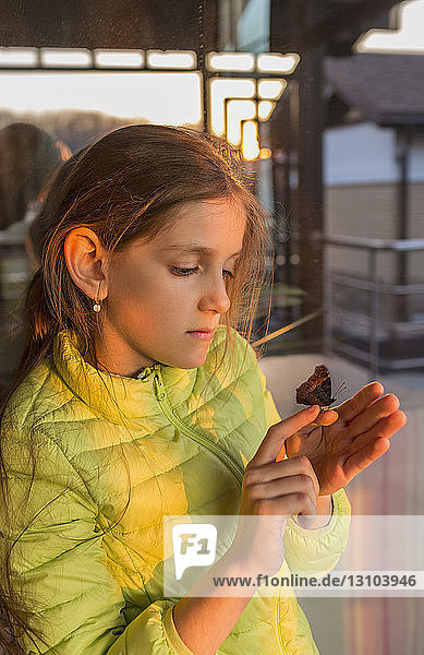 Curious girl watching butterfly on finger
