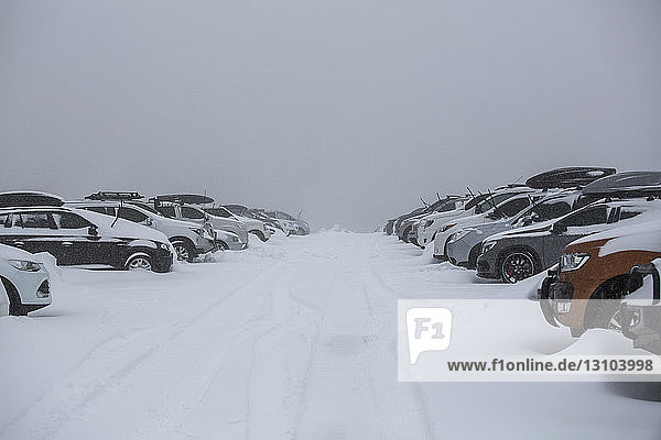 Snow covering parked cars in full parking lot