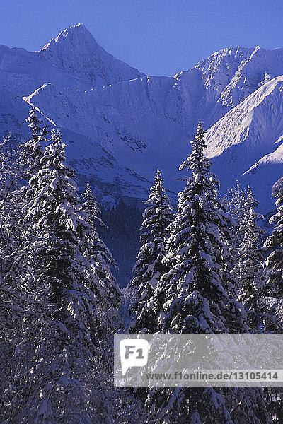 Alsek Range In Winter Southeast Alaska