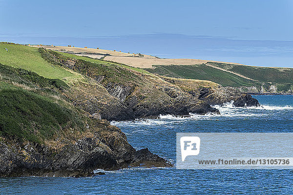 Rugged coastline along the Atlantic with farmland; Kinsale  County Cork  Ireland