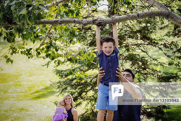 A mother and baby watch while the father holds his son high up to assist him in hanging from a tree branch during a family outing in a park on a warm fall day; Edmonton  Alberta  Canada
