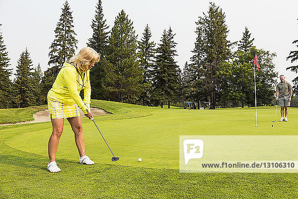 A female golfer swings and makes a putt while her teammate helps to mark the terrain to assist her at the hole on a golf course; Edmonton  Alberta  Canada