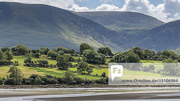 Mountains covered in green foliage and a beach along the coast in the foreground; Castlegregory  County Kerry  Ireland