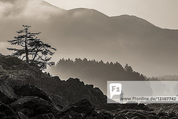 A male camper enjoys the sunrise over Nootka Island at low tide in Nuchatlitz Provincial Park; British Columbia  Canada