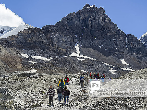 Hikers walking a rough trail in the rugged Rocky Mountains in Jasper National Park; Alberta  Canada