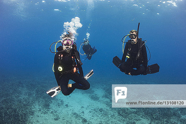 A group of three divers demonstrate neutral buoyancy skills over a reef; Hawaii  United States of America