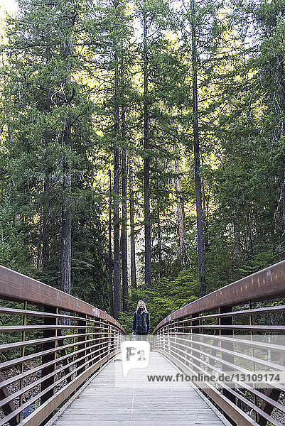 Full length on woman with dog standing on footbridge in forest