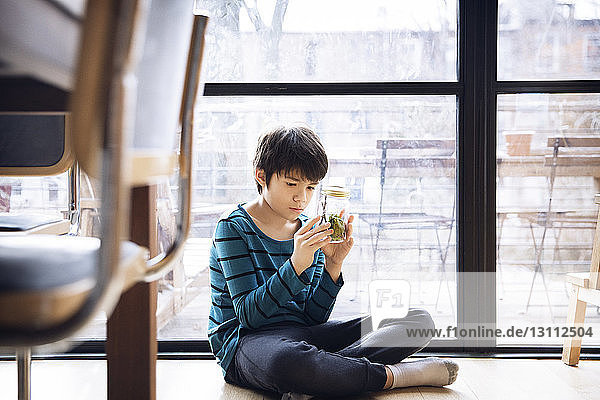 Boy looking at jar while sitting on floor against window