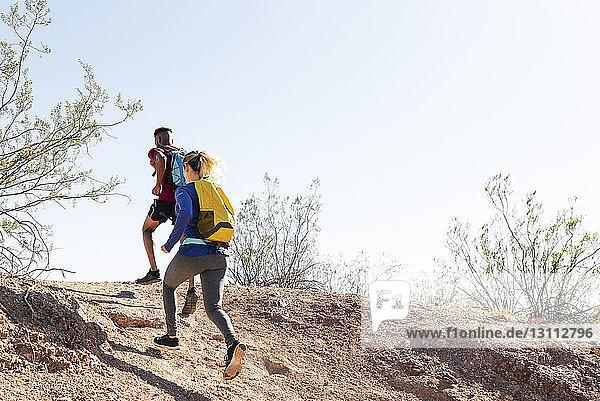 Niedrigwinkelansicht von Wanderern mit Rucksäcken  die am sonnigen Tag auf dem Hügel gegen den klaren Himmel laufen