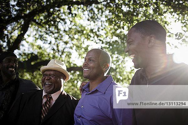 Niedrigwinkelansicht eines glücklichen Vaters mit Söhnen  die im Park an Bäumen stehen