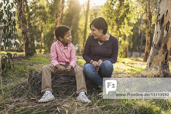 Mutter und Sohn unterhalten sich im Wald sitzend