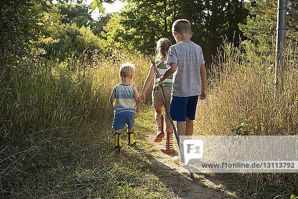 Rear view of siblings walking on field at forest