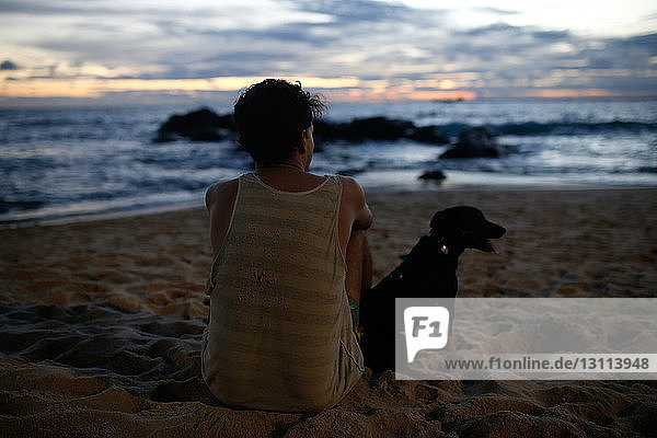 Rear view of man with puppy sitting on sand at beach