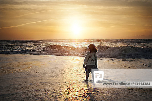 Rear view of girl standing on shore at beach against sky during sunset