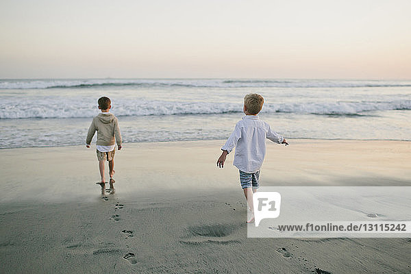 Rear view of brothers walking towards sea against sky at beach