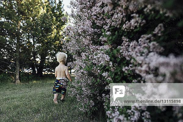 Rückansicht eines Jungen ohne Hemd  der auf einem Grasfeld im Hinterhof läuft