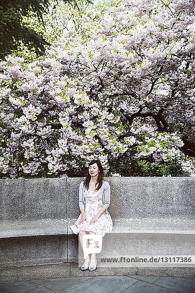 Entspannte Frau sitzt auf Sitz gegen blühende Zweige