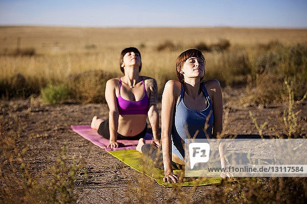 Woman lying on front while practicing yoga in upward facing dog pose on field