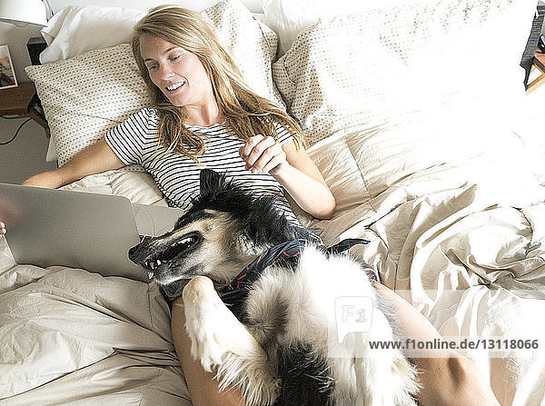 High angle view of woman with dog using laptop computer while lying on bed