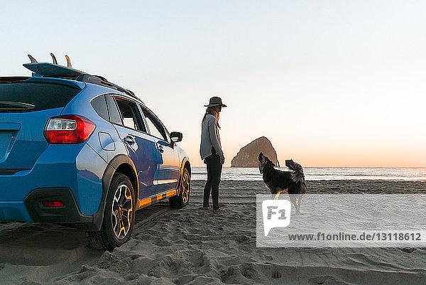 Glückliche Frau mit Hund steht am Strand am Auto