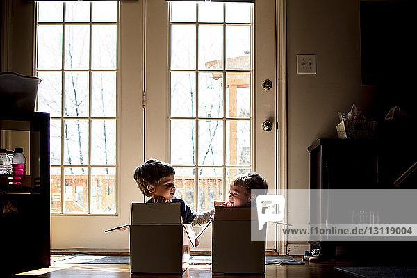 Verspielte Brüder  die sich anschauen  während sie zu Hause in einem Pappkarton sitzen