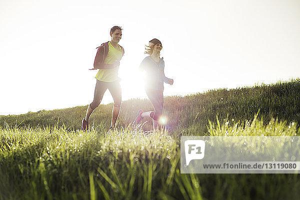 Freunde laufen bei Sonnenuntergang auf Grasfeld