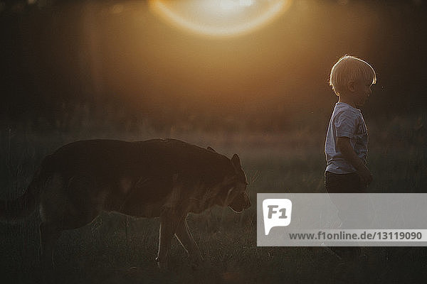 Side view of boy and dog walking on field